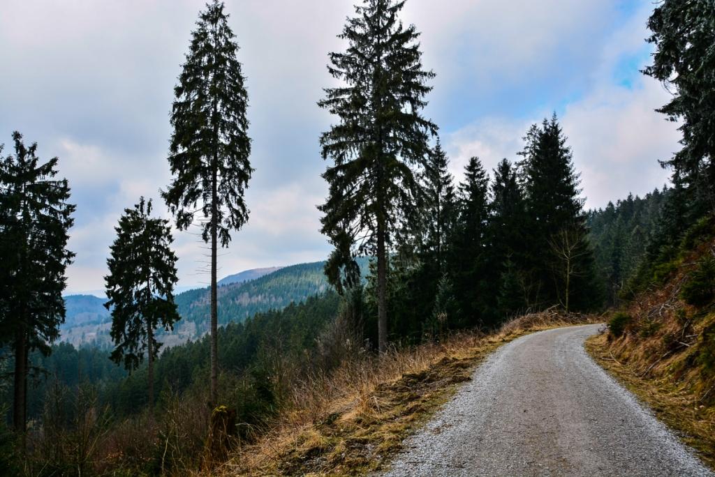 Harz - Wege